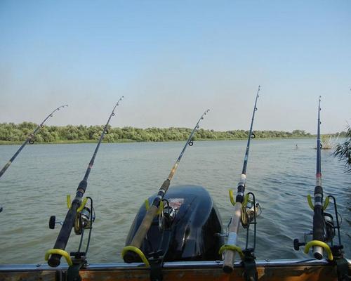 Pensiunea Pescarul Vanator 4✿, Crisan, Delta Dunarii